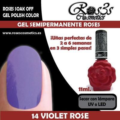 14-Violet Rose