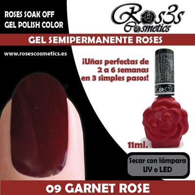 09-Garnet Rose